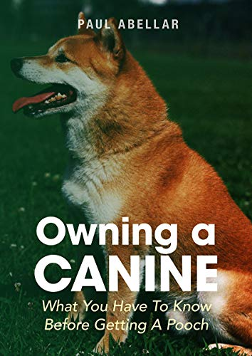 Owning A Canine: What You Have To Know Before Getting A...