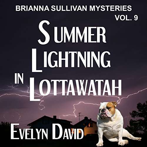 Summer Lightning in Lottawatah audiobook cover art