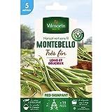 Vilmorin - Haricot vert sans fil Montebello très fin - 5 mètres - Vilmorin