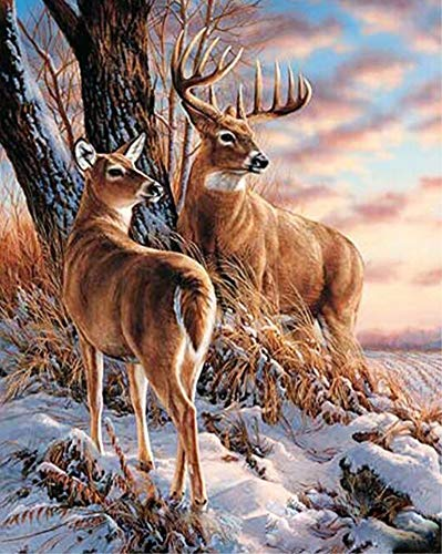 JOLOMOY Paint by Numbers Kits for Adults, DIY Digital Oil Painting by Number for Kids Beginner - Deer Elk in Winter Snow 16X20 inch Number Painting (Deer Elk, Frameless)