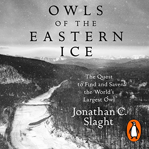 『Owls of the Eastern Ice』のカバーアート