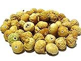 ペルシアンフィグ(ドライいちじく) 無添加 (A 10kgケース) 栽培期間 農薬不使用
