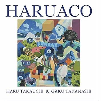 Haruaco