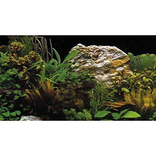 Hobby 31127 Fotorückwand-Zuschnitt Pflanzen 2 / 7