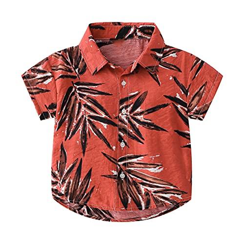 inlzdz Kleinkind Baby Jungen Hawaii Hemd Top Kurzarm Baumwolle Ananas Gedruckt Button Down Freizeithemd Aloha Shirts Sommer Kleidung Beachwear Type K 98-104