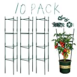 XPCARE 10 Pack Tomato Cages 62 Inch Plant Cages Plant Support with 120 Vegetable Trellis,80 Clips, Climbing Indoor Plants Moss Poles Individually or Together