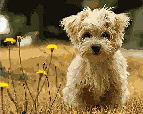 KSKD Peinture par numéros pour adultes enfants toile de lin bricolage peinture numérique par numéros kits toile Chien animal herbe- 16x20 pouces sans cadre
