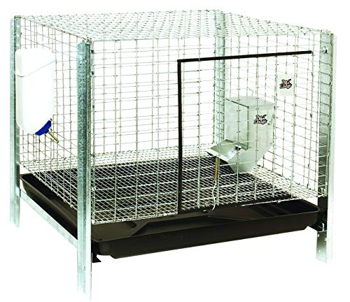 LITTLE GIANT Rabbit Hutch Complete Kit - Pet Lodge - Easy to Assemble Housing, Feeder, Water Bottle Kit for Indoor/Outdoor Rabbit Hutch (Item No. RHCK1)