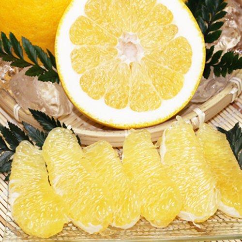 「贈答最上ナダオレ3」贈答用最上級ナダオレンジ3kg皮むき簡単食べ易い冷やして食べるとひんやりジューシー(河内晩柑, フルーツ 果物 通販 高級果物