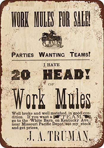 SIGNCHAT 1884 - Cartel de Metal con Texto en inglés Mulas for la Venta, 20,3 x 30,5 cm