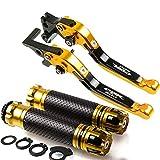 Conjunto De Freno Palanca Specialized Más Caliente para Honda CBR600 CBR 600 F2, F3, F4, F4i CNC Palanca De Embrague De Freno Plegable De Motocicleta Mango (Color : A)
