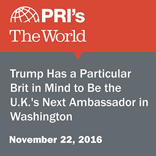 Trump Has a Particular Brit in Mind to Be the U.K.'s Next Ambassador in Washington cover art