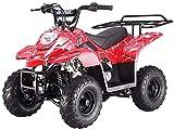 X-PRO 110cc ATV Quads Youth ATV Kids Quad ATVs 4 Wheeler (Spider Red)