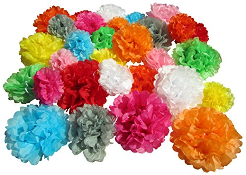 Tissue Paper Pom Poms - Set of 30 Pcs - Pre Folded Paper Decoration for Party Wedding Birthday Bridal Baby Showers Mexican Fiesta Flowers - 6 8 10 Inch - 10 Mixed Colors