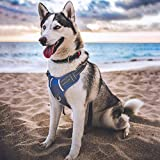 BABYLTRL Big Dog Harness No Pull Adjustable Pet Reflective Oxford Soft Vest for Large Dogs Easy Control Harness (L, Blue)