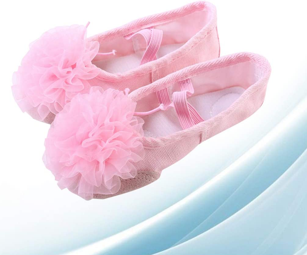 HEALLILY Pink Ballet Dancing Shoes Ballerinas Dance Yoga Slippers Dance Shoes Gauze Flower Shoes Soft Sole Ballet Shoes Belly Dance Shoes for Kids Children Women Size 23