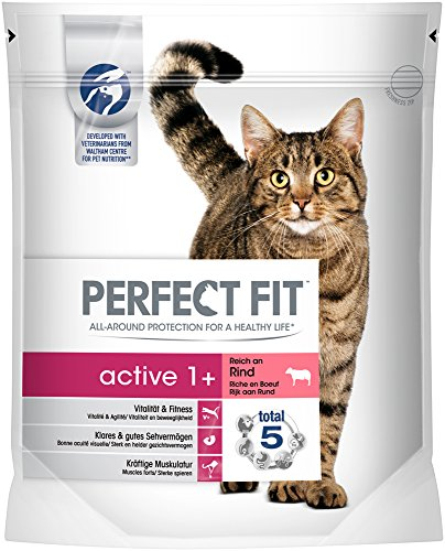 Perfect Fit Cat Trocken Active 1 plus reich an Rind, 750 g