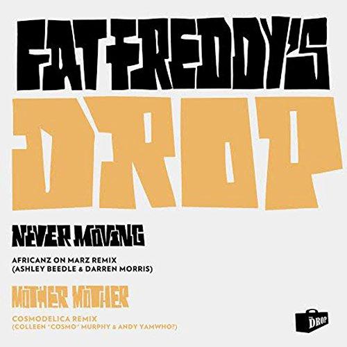 Mother Mother / Never Moving Remixes [Vinyl Maxi-Single] [Vinyl Maxi-Single]