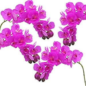 cn-Knight Tropical Artificial Flower 4pcs 28″ Long Stem Butterfly Orchid Big Size Lifelike Phalaenopsis Real Touch Moth Orchid for Wedding Bridal Home Décor Baby Shower Centerpiece(Purple)