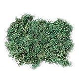 200g Musgo Artificial, Artificial Lichen ,Planta Simulada de Musgo Verde,Ideal para Decorar Plantas, Flores o Guirnaldas,Decoración del Patio del Jardín de Casa