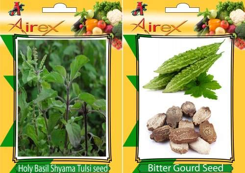 FERRY Hohe Wachstum Seeds Nicht NUR Pflanzen: Seed Holy Basil (Shyama Tulsi), (Karela) Seed (15 pro Paket)