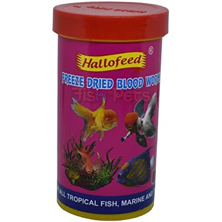 Hallofeed Freeze Dried Blood Worms Fish Food - 20 Gms