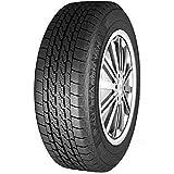 Nankang 53658 Neumático Aw-8 205/65 R16 107/105T para Furgoneta, Todas Las Temporadas