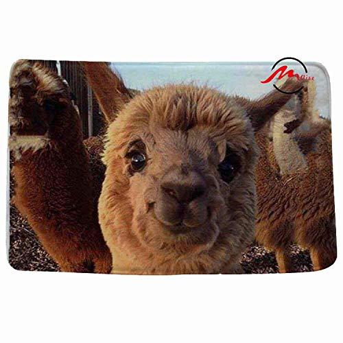 Irinay Alpaca Llama Alpacos Llama Antideslizante Baño Ducha Chic Alfombra Felpudo Felpudo...
