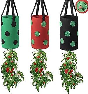 2PC Strawberry Grow Bag 3 Gallon Indoor Plant Pot Garden Pots Gardening Supply Planter Bag Luxury Strawberry Planting Bag ...