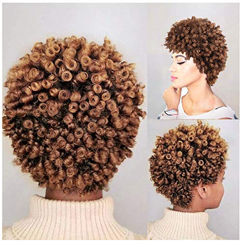Lady Miranda Mixed Brown Kinky Curly Wig Short Afro Curly Heat Resistant Synthetic Hair Full Wigs For Women (Brown&Light brown)