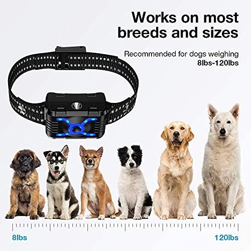 ULTPEAK Collar de Adiestramiento para Perros, Impermeable Collar Remoto Antiladridos, Remoto y 2 Dispositivo de Adiestramiento con Modo de Pulverización Vibratoria 4 en 1 Pitido