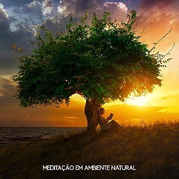 Meditação em Ambiente Natural
