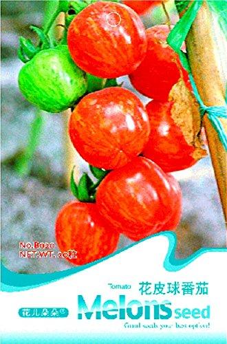De petite taille Tomato Red Dwarf avec de l'or Stripe semences hybrides, pack d'origine, 20 graines / Paquet, comestible savoureux doux Juicy Fruit B020