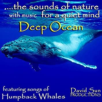The Sounds Of Nature With Music For A Quiet Mind: Deep Ocean