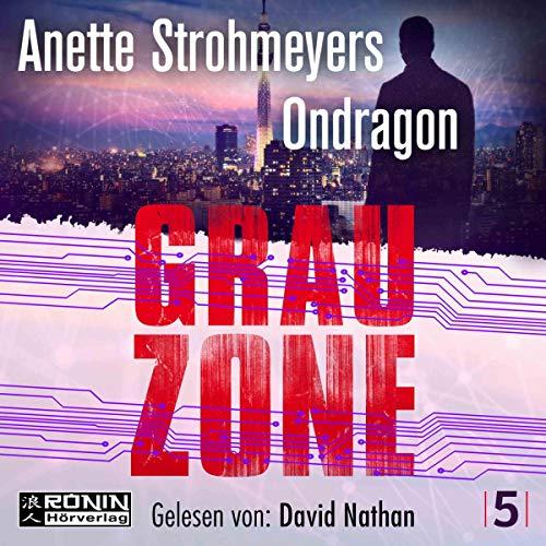 Grauzone cover art