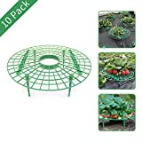 YIDIE Strawberry Supports W/Four Legs Keeping Fruit Elevated to Avoid Ground Rot,10 Pack…