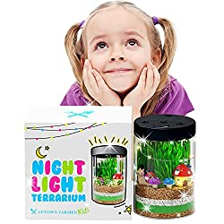 Uptown Farmer Kids Terrarium Kit for Kids - Best Terrarium Kits