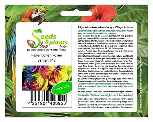 Stk - 25x Regenbogen Rosen Blumen Pflanzen - Samen #48 - Seeds Plants Shop Samenbank Pfullingen Patrik Ipsa