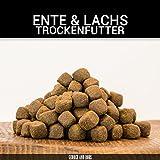 George & Bobs Ente & Lachs Adult | 3 kg | Getreidefrei | 70% Fleischanteil | Superfoods | Trockenfutter | Grünlippmuschel | für ausgewachsene Hunde