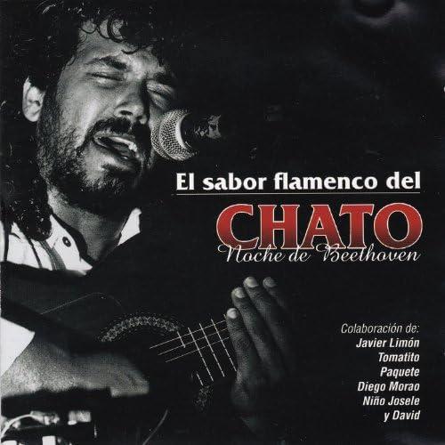 El Chato feat. Tomatito, Javier Limón, Diego Morao, Niño Josele y David
