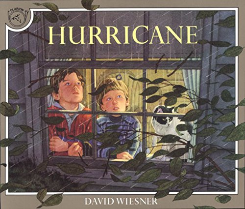 Hurricane (Read Along Book & CD)の詳細を見る