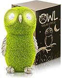 Solar Garden Statue of Owl with Solar Light Eyes - Outdoor...