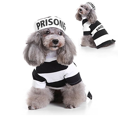 LUCKSTAR Prisoner Dog Costume - Prison Pooch Dog Halloween Costume Party Pet Dog Costume Clothes Cosplay with Hat for Teddy/Pug/Chihuahua/Shih Tzu/Yorkshire Terriers/Cat (M)