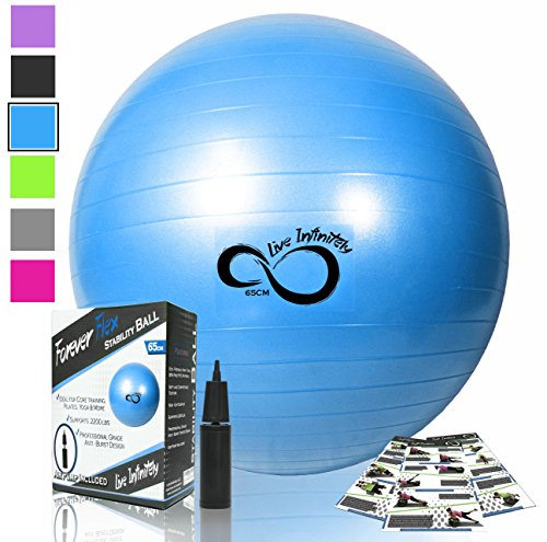 Exercise Ball -Professional Grade Exercise Equipment Anti Burst Tested with Hand Pump- Supports 2200lbs- Includes Workout Guide Access- 55cm/65cm/75cm/85cm Balance Balls (Bright Blue, 65 cm)
