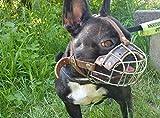 Champion Bozal de canasta para Bulldog francés   Bozal de canasta...