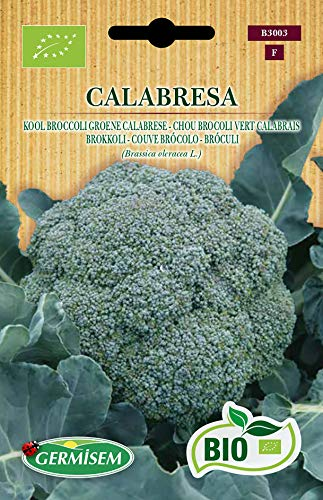 Germisem Bio Graines Chou Brocoli vert Calabrais CALABRESA