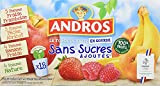 ANDROS Compotes de fruits en gourdes 4 variétés panachées Sans Sucres Ajoutés 18x90g - Lot de 2