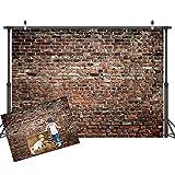 LYWYGG 7x5FT Fondos de Fotografía de Pared de Ladrillo Marrón Fondo de Fiesta Familiar Fondo de Vinilo Fotografía de Utilería para Bebés Fondos de Fotografía Marrón Galería de Fotos Fondo de CP-312