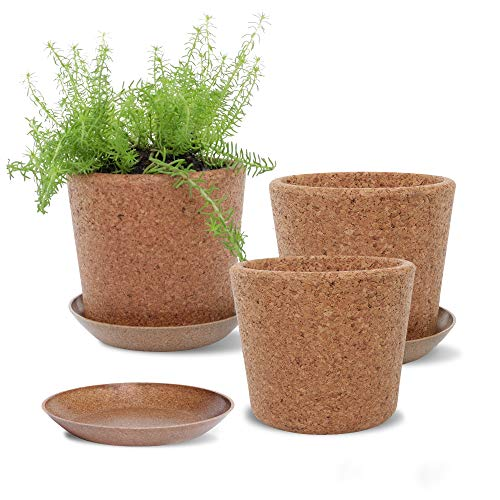 Wild Pact Set of 3 Cork Plant Pots (Large Grain) - 5.5' + Rice Hull Saucers - Drainage Hole - Garden Planters for Indoor and Outdoor Flowers, Herbs, Succulents (Large Grain)