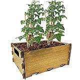 PLANTAWA Kit de Siembra para Tomates, Kit de Cultivo para Huerto Urbano, Jardinera Interior para Casa, Kit Cultivo de Plantas Naturales Tomates Frescos